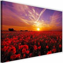 Leinwandbild Sonnenuntergang über einem