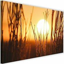 Leinwandbild Sonnenuntergang und Sträucher