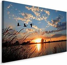 Leinwandbild Störche bei Sonnenuntergang am See