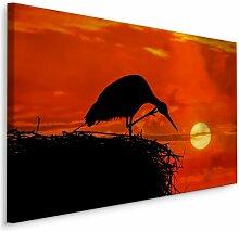 Leinwandbild Storchennest bei Sonnenuntergang