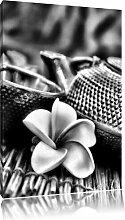 Leinwandbild Teekanne mit Kräutern in Monochrom