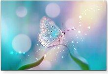 Leinwandbild Traumhafter Schmetterling