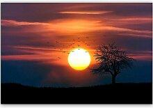 Leinwandbild Vögel bei Sonnenuntergang 3