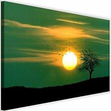 Leinwandbild Vögel bei Sonnenuntergang 4