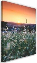 Leinwandbild Weizen bei Sonnenuntergang