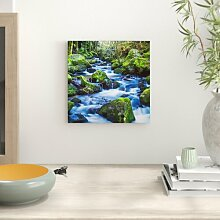 LeinwandbildWilder Bach und grüne Pflanze