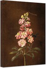 Leinwandbilder - Leinwandbild Dietzsch - Eine rosa Garten Levkkoje