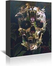 Leinwanddruck Kingdom Skull Americanflat