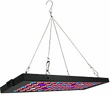 Lengjoy LED Pflanzenlampe 40W, Zimmerpflanzen
