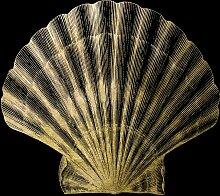 Leonique Acrylglasbild Muschel 50x50 cm, schwarz
