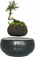 Levitating potted schwimmenden Topf Luft Bonsai