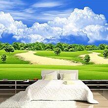 LHDLily Blue Sky Wandbild Tapete 3D Wohnzimmer