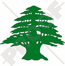Libanon Zeder Form libanesischen Libanon-Zeder Baum 12,7cm (125mm) Vinyl-Aufkleber, Fenster Aufkleber–Wahl von 22Farben