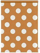 Lichtblick Duo Rollo Kreis, 70 x 150 cm in Orange,