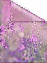 Lichtblick Fensterfolie 50 x 50 cm mit Motiv