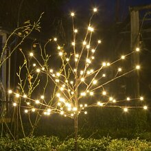 Lichterbaum Die Saisontruhe
