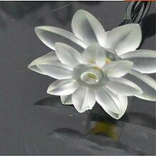 Lichterkette 10M LED Lotus Blumen Lichter lichter