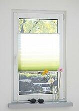 Liedeco® Klemmfix Plissee Farbverlauf verspannt inkl. Klemmträger / Plissee farbig zum Klemmen fürs Fenster / Sonnenschutz und Fensterdekoration innen / lichtdurchlässig und verstellbar / Innen-Montage ohne Bohren / 123 montiert / Falt-Plissee / Plissee-Rollo Sichtschutz Blendschutz (90 x 130 cm, grün)