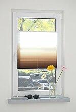 Liedeco® Klemmfix Plissee Farbverlauf verspannt inkl. Klemmträger / Plissee farbig zum Klemmen fürs Fenster / Sonnenschutz und Fensterdekoration innen / lichtdurchlässig und verstellbar / Innen-Montage ohne Bohren / 123 montiert / Falt-Plissee / Plissee-Rollo Sichtschutz Blendschutz (80 x 130 cm, braun)