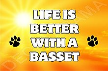 Life is better with a BASSET Hund–Jumbo