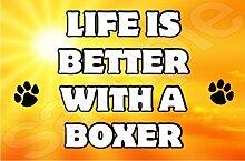 Life Is Better With A Boxer ', Jumbo-Magnet Geschenk/Geschenk