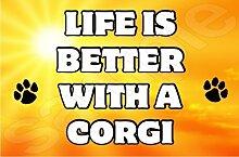 Life is better with a Corgi Hund–Jumbo Magnet als Geschenk/Geschenk