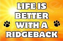 Life is better with a Ridgeback Hund–Jumbo Magnet als Geschenk/Geschenk