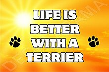 Life is better with a Terrier Hund–Jumbo