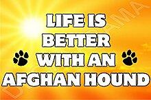 Life ist besser mit einem afghanischen Windhund Hund–Jumbo Magnet als Geschenk/Geschenk