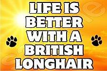 Life ist besser mit einem britischen langhaarig