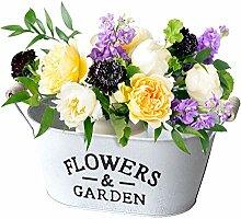 Lifetime Pflanzschale 'Flowers & Garden'