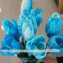 Lila Hydrangea Samen Balkon Bonsai Fort Viburnum Macrophylla Bonsai Pflanze Blumensamen 100 Stücke / Los, # 17TOZ3