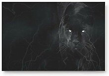 LiminiAOS Der Schwarze Panther im Dunkeln