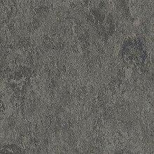 Linoleum Bodenbelag | Veneto Essenza | 673