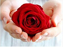 LINXIJH 5D DIY Diamant Malerei Rose In Der Hand