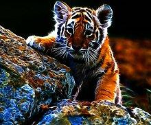 LINXIJH Diamant Malerei Kits Stone Rock Tiger