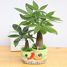 liuhoue Simulation Pflanze Potted Pflanzen,