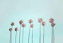 living walls Fototapete ARTist Tropical Trees,