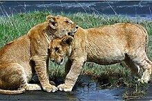 Livingwalls Fototapete Löwe Tiere Tansania