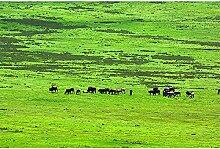Livingwalls Fototapete Natur Tiere Tansania 4.00 m
