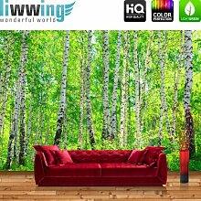 liwwing FT0007-VP4002808 Fototapete Vlies Premium Birch Forest, Vliestapete, Tapete Birkenwald, Wald, Sonne, 400 x 280 cm, natur