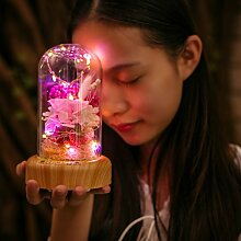 LJ-HUA Ewige Blumen,Musik Box Bluetooth Audio mit