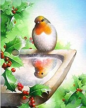 LJXLXY 5d DIY Diamant Stickerei vögel Foto