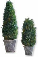LOBERON Zypresse 2er Set Anjette, grün/grau