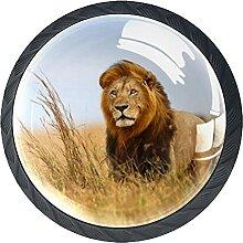 Löwe Caesar im goldenen Gras, 4Pack ABS Kommode