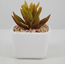LOF-fei Künstliche Pflanzen Sukkulenten Home