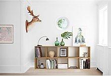 Loft24 Regal Set Comfort Bücherregal 10 Fächer