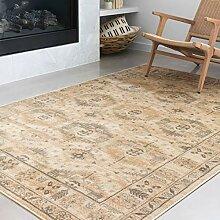 Loloi ll Isadora Collection Persischer Teppich