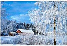 Lomoko Schneebedeckte Waldlandschaft in Finnland