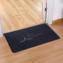 Longshien-Teppich Türmatten Home Eingang Matte rutschfeste Matte Türmatten ( Farbe : Blau , größe : D )
